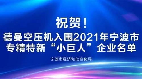 德曼压缩机登榜2021年宁波专精特新小巨人企业